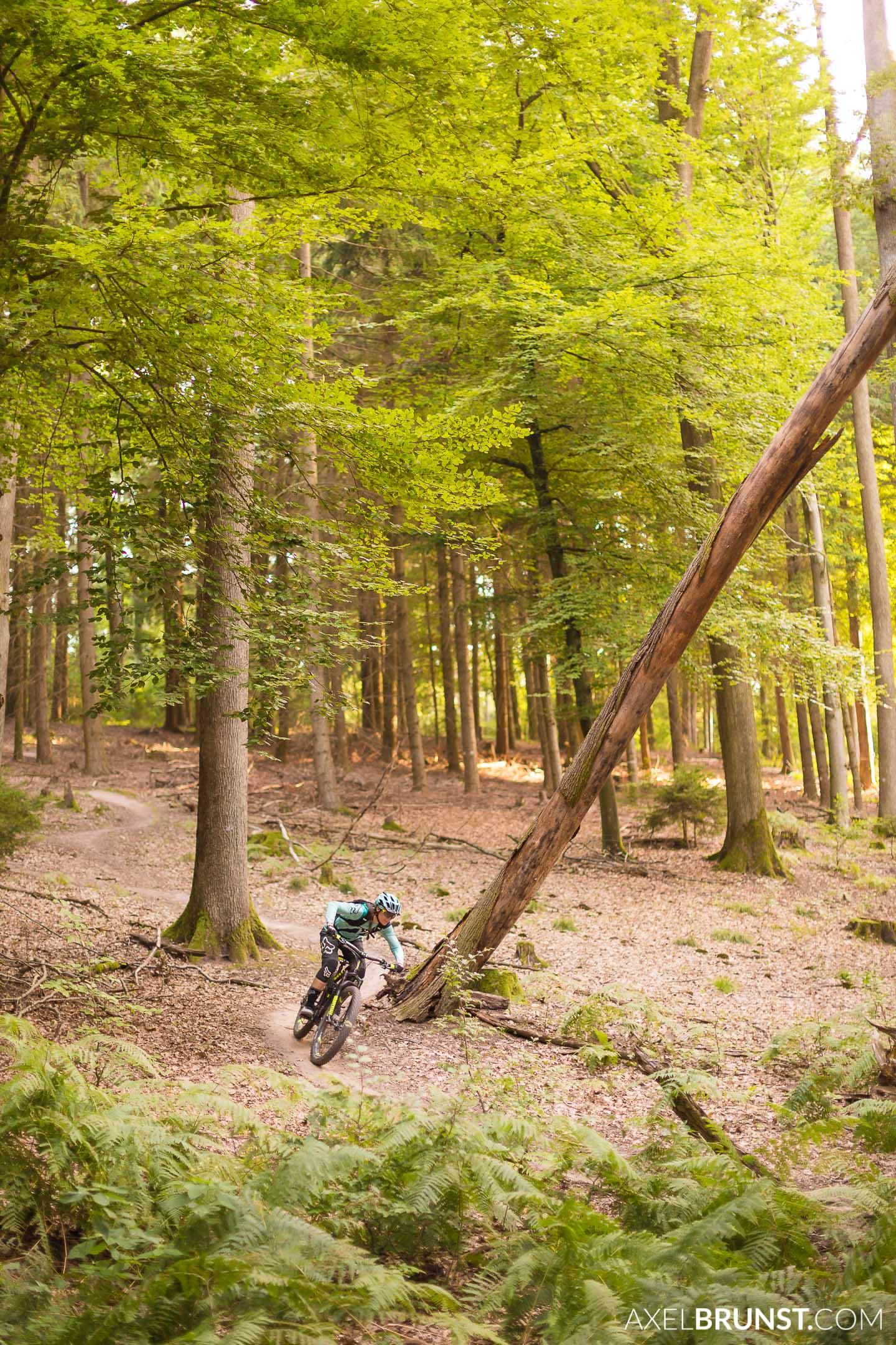 xc-biking-tour-3.jpg