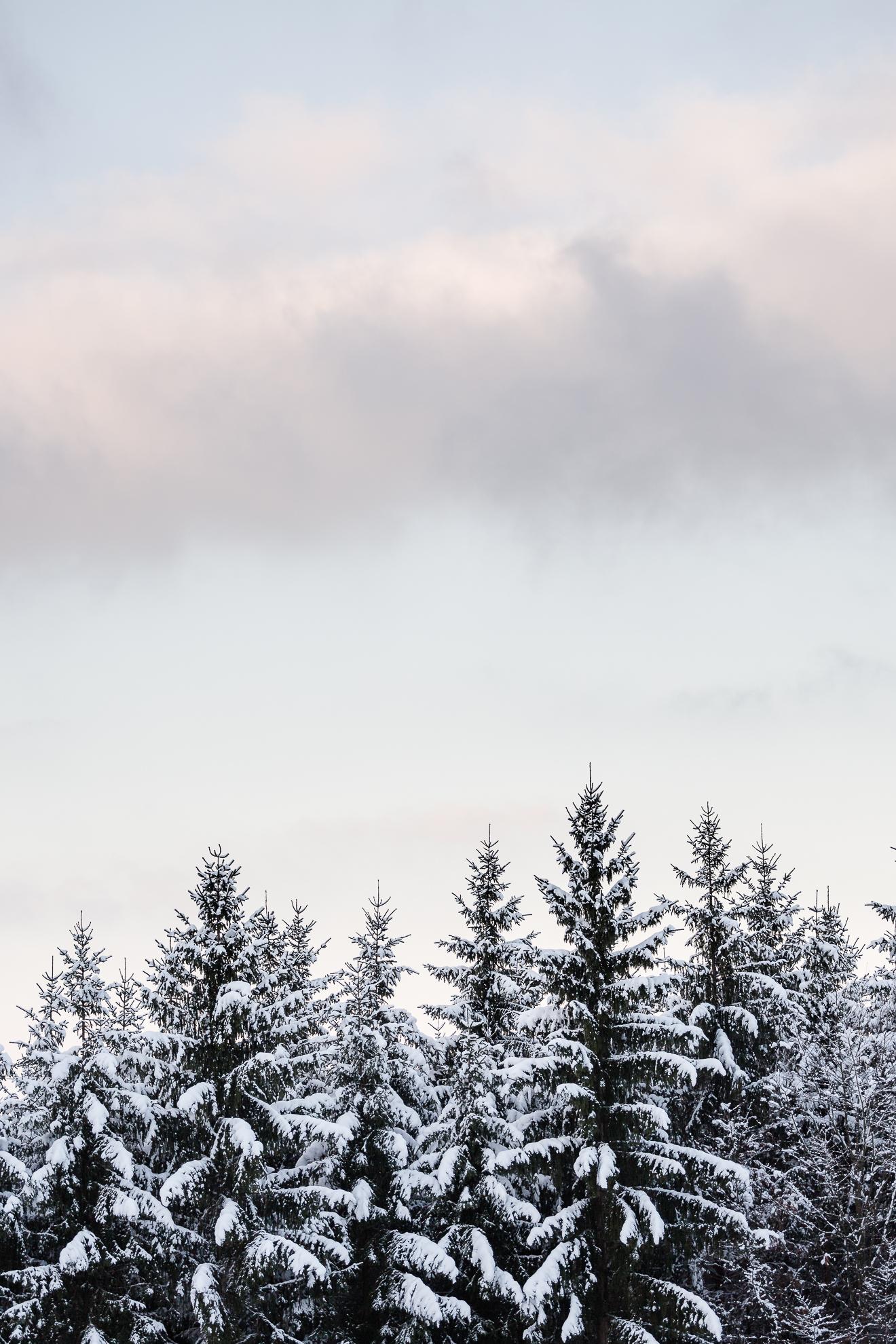 AB_20171202_Zell-Winter-Walks_060-23.jpg