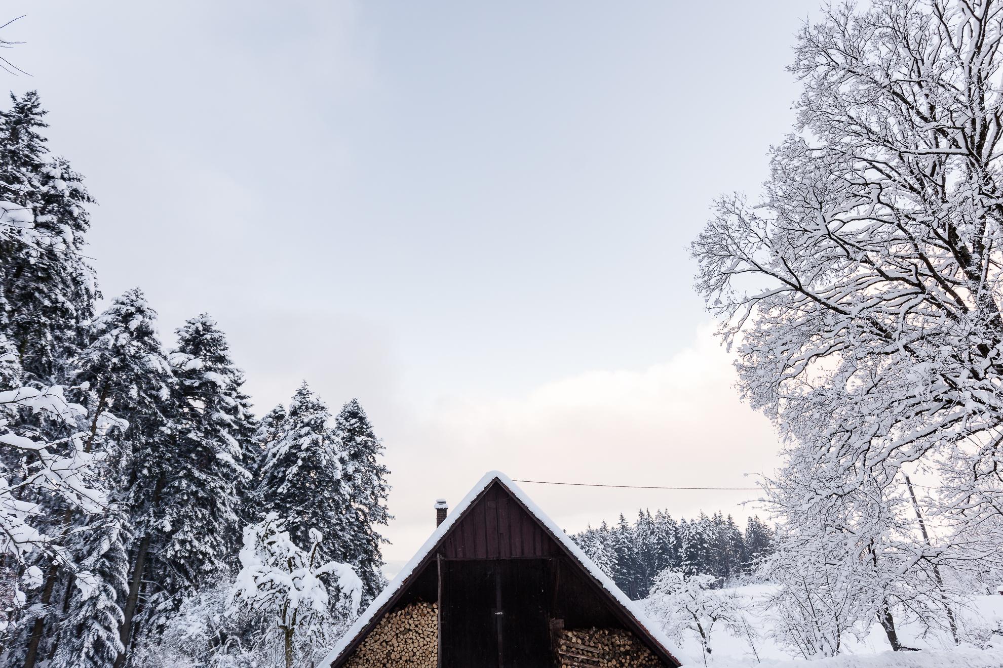 AB_20171202_Zell-Winter-Walks_060-40.jpg