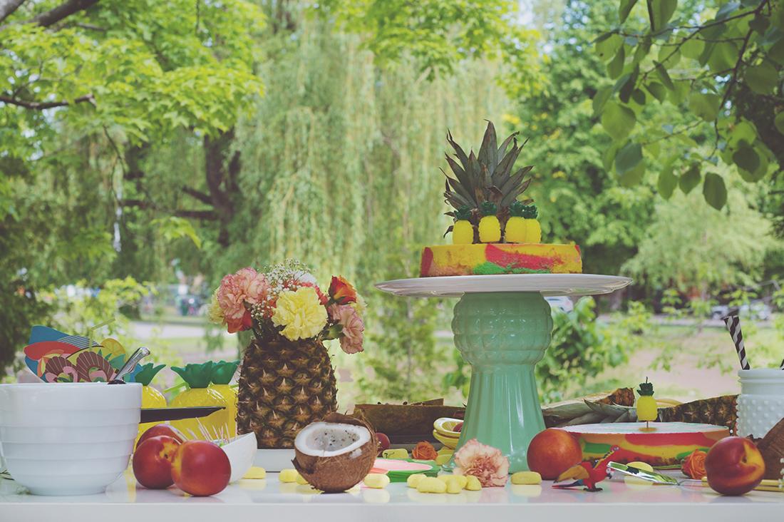 Péa les maisons. Decoration services for children's birthday party