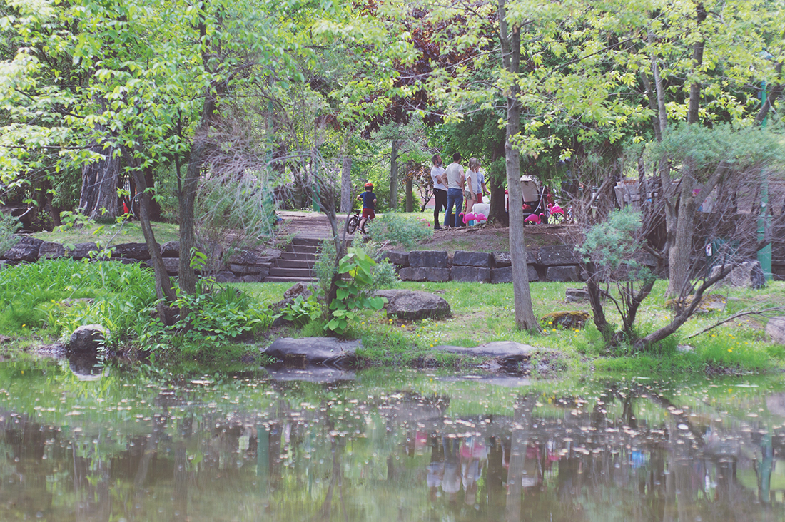 Péa les maisons. The prettiest park to invite flamingos to celebrate your fourth birthday party