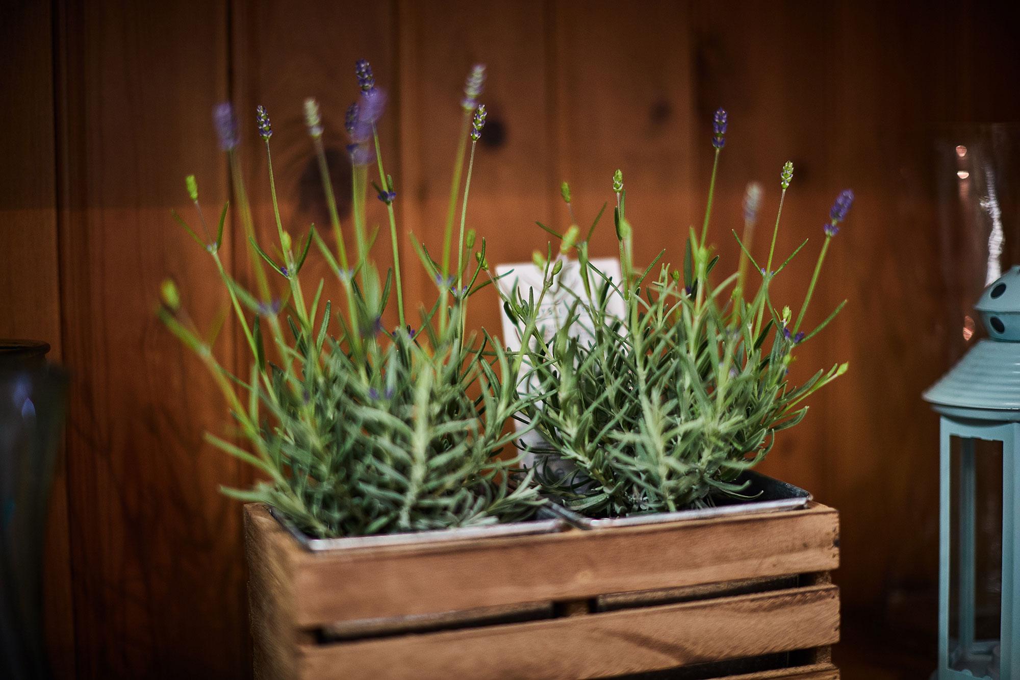perkins-florist-duston-northampton-1.jpg