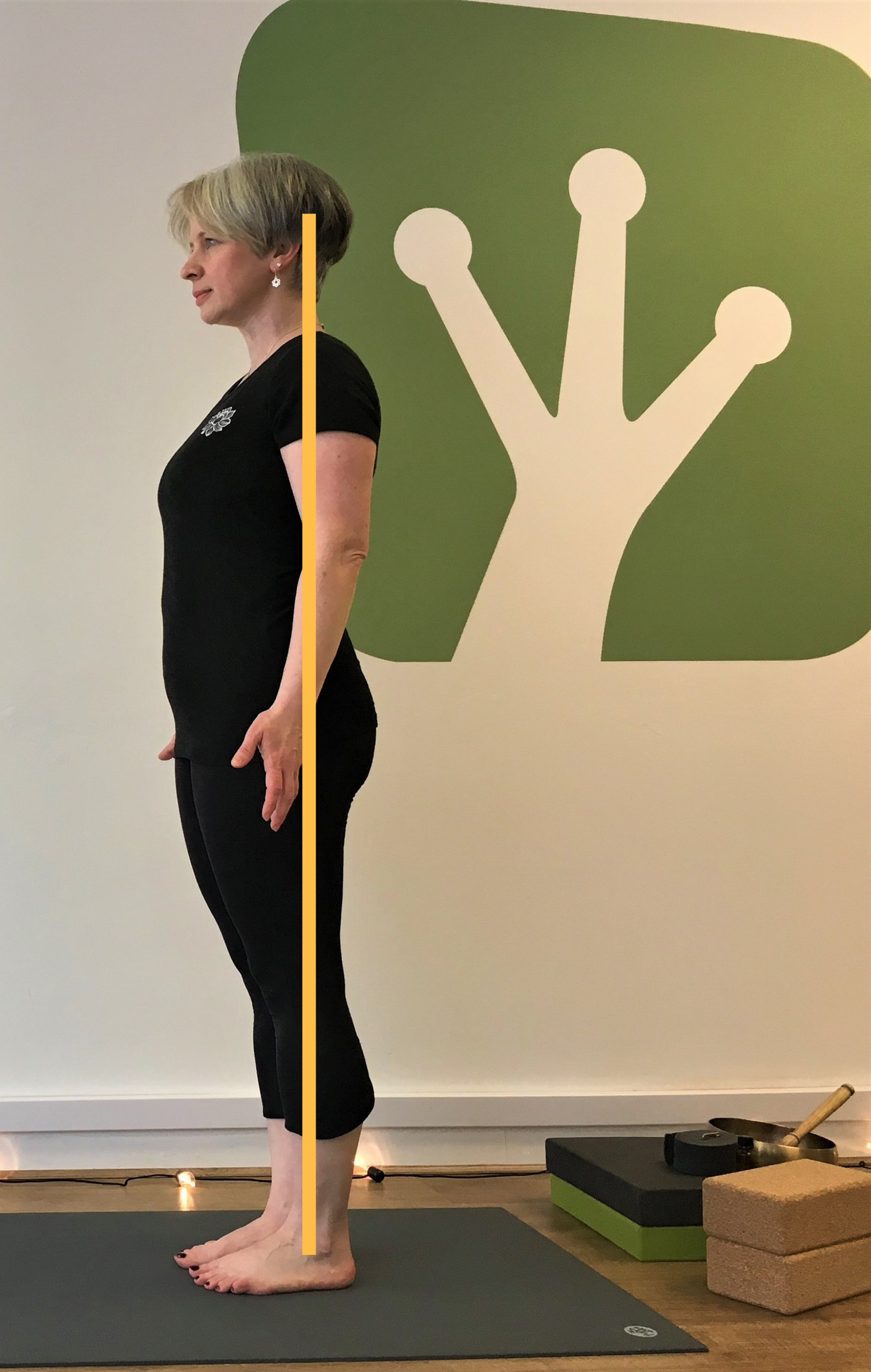 DAY 1 MOUNTAIN POSE Alignment through side body.png
