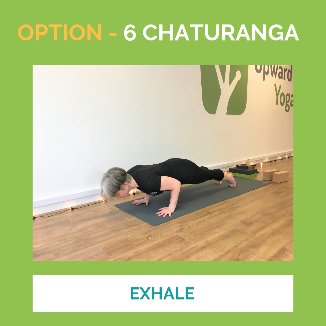 Option 6 Chaturanga.png