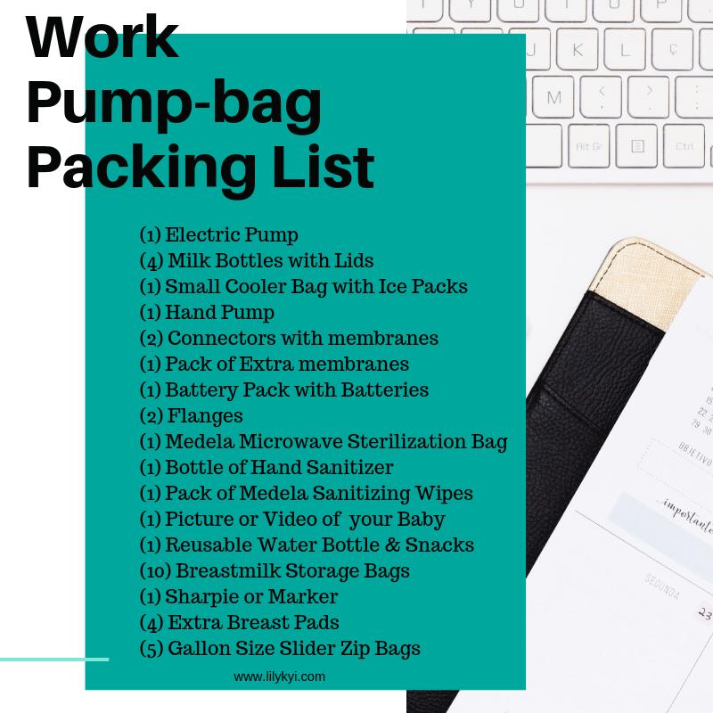Lily Kyi Work Pump Bag-List