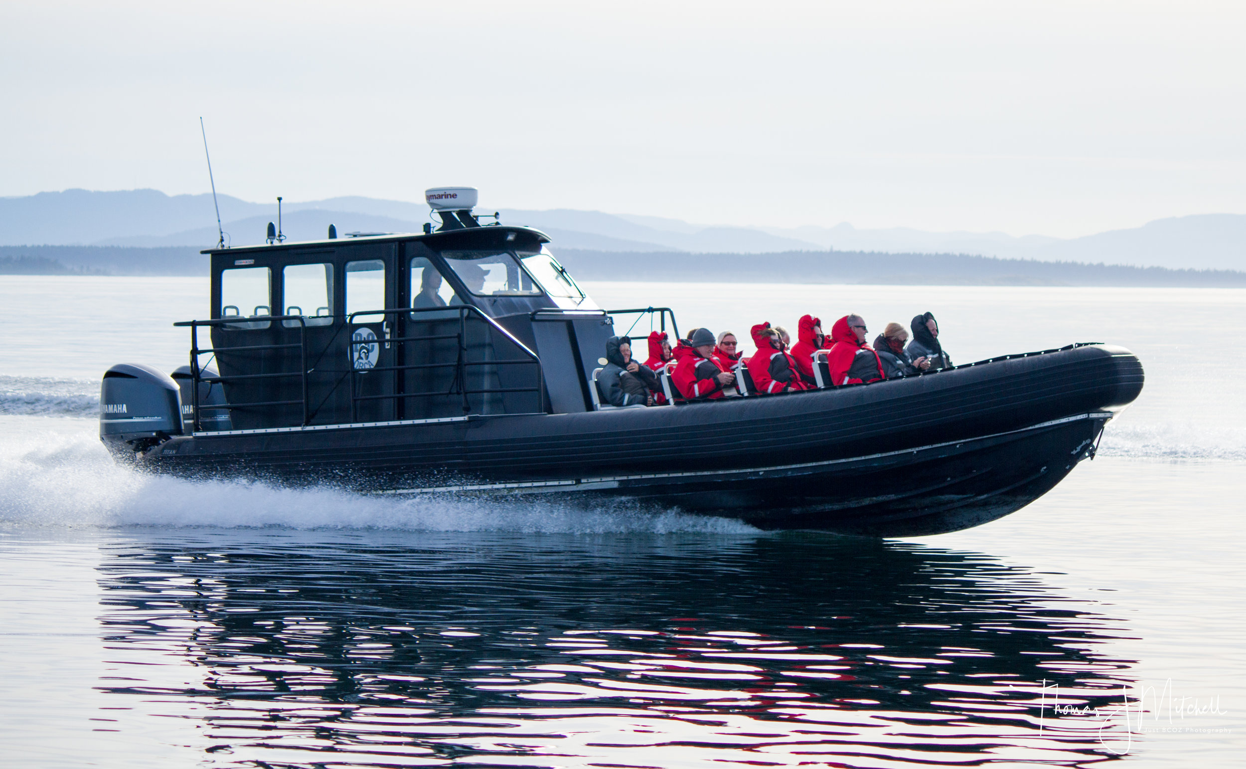 BC ORCA - 10:00am & 2:00pm DEPARTURES12 PASSENGER MAX, INDOOR/OUTDOOR SEATING, WASHROOM, SURVIVAL SUITS PROVIDED