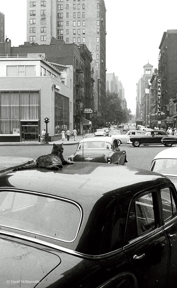 Cat. 6th Avenue looking down W. 4th Street, 1957.