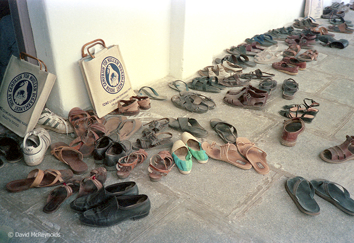 sandals outside meeting_web.jpg