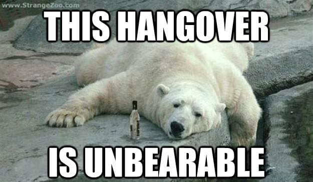 Debunking the hangover cure — The Xaverian Weekly