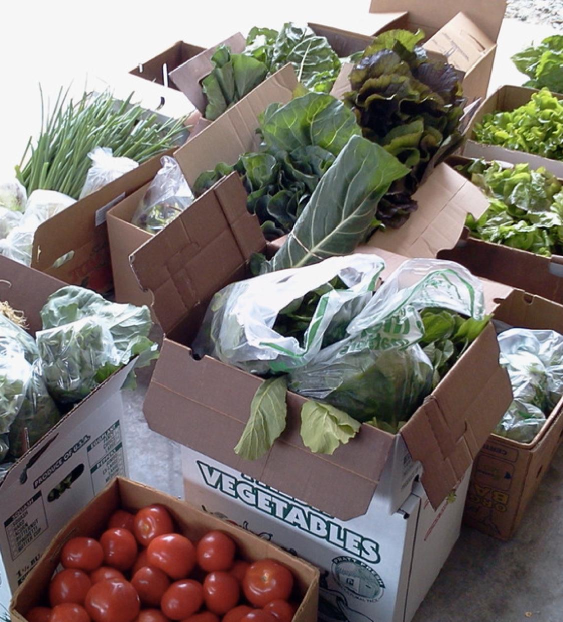 market veggies.png