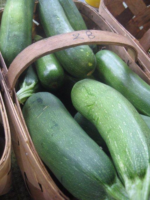 Copy+of+farmers_market_413-zucchini+copy.jpg
