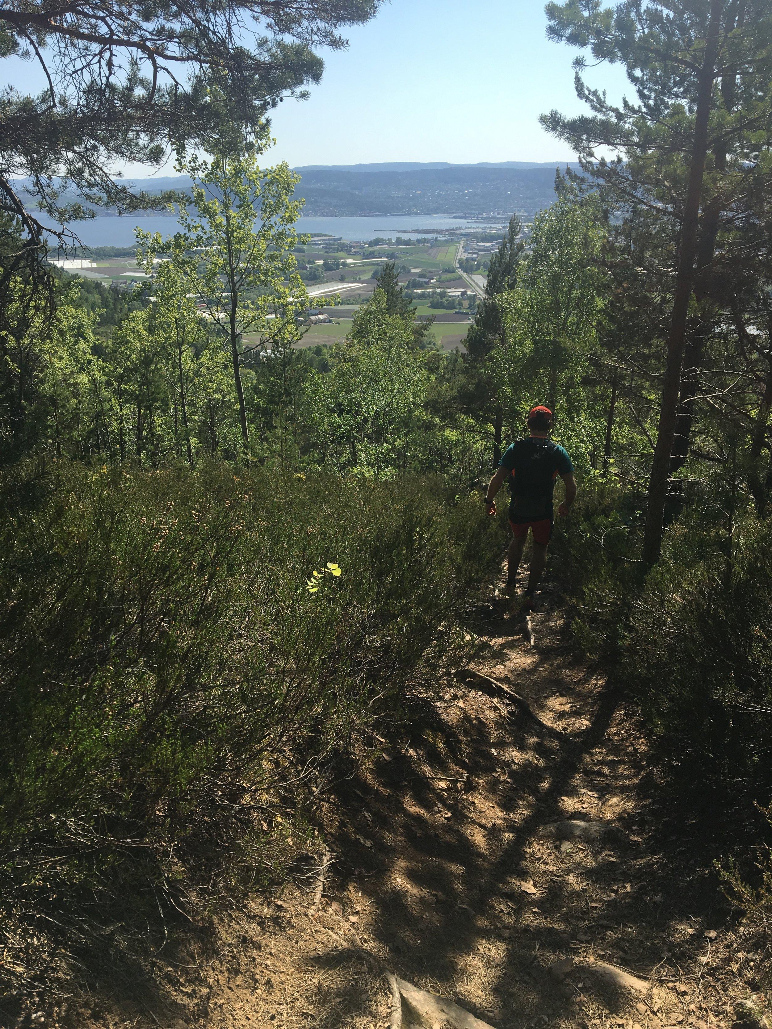 Morten på vei ned utforbakkene i Reistadlia. Drammensfjorden og veien videre i bakgrunnen.