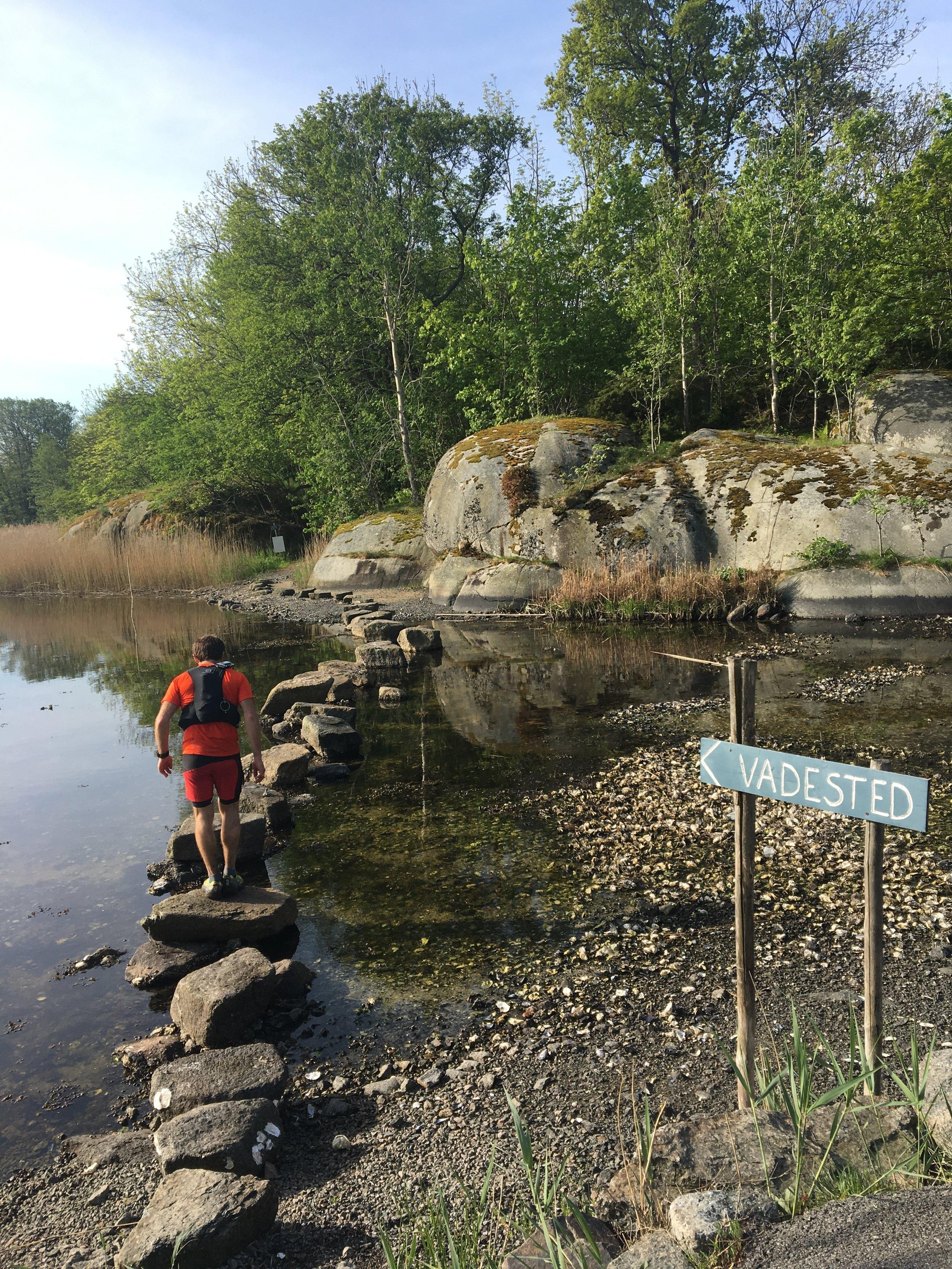 Morten på vei over vadesteinene ved Furusund på Tjøme 👣
