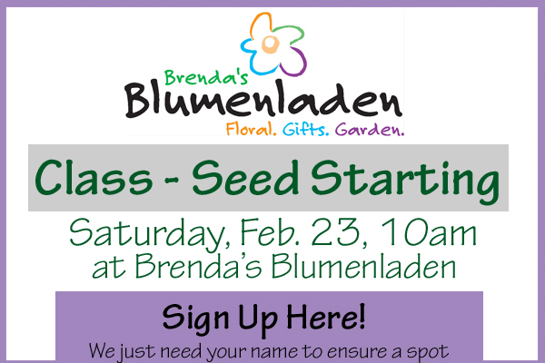 New Glarus Shop Event at Brenda's Blumenladen