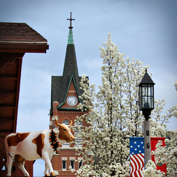 New Glarus Cows On Parade - Can You Find All 17?