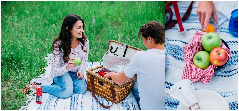 picnic-engagements-ririe-idaho-colorado-wyoming-wedding-photographer_0476.jpg
