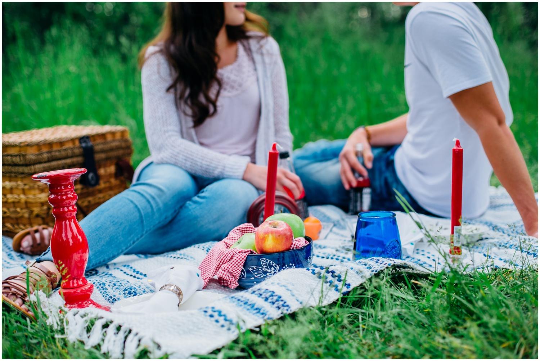 picnic-engagements-ririe-idaho-colorado-wyoming-wedding-photographer_0481.jpg