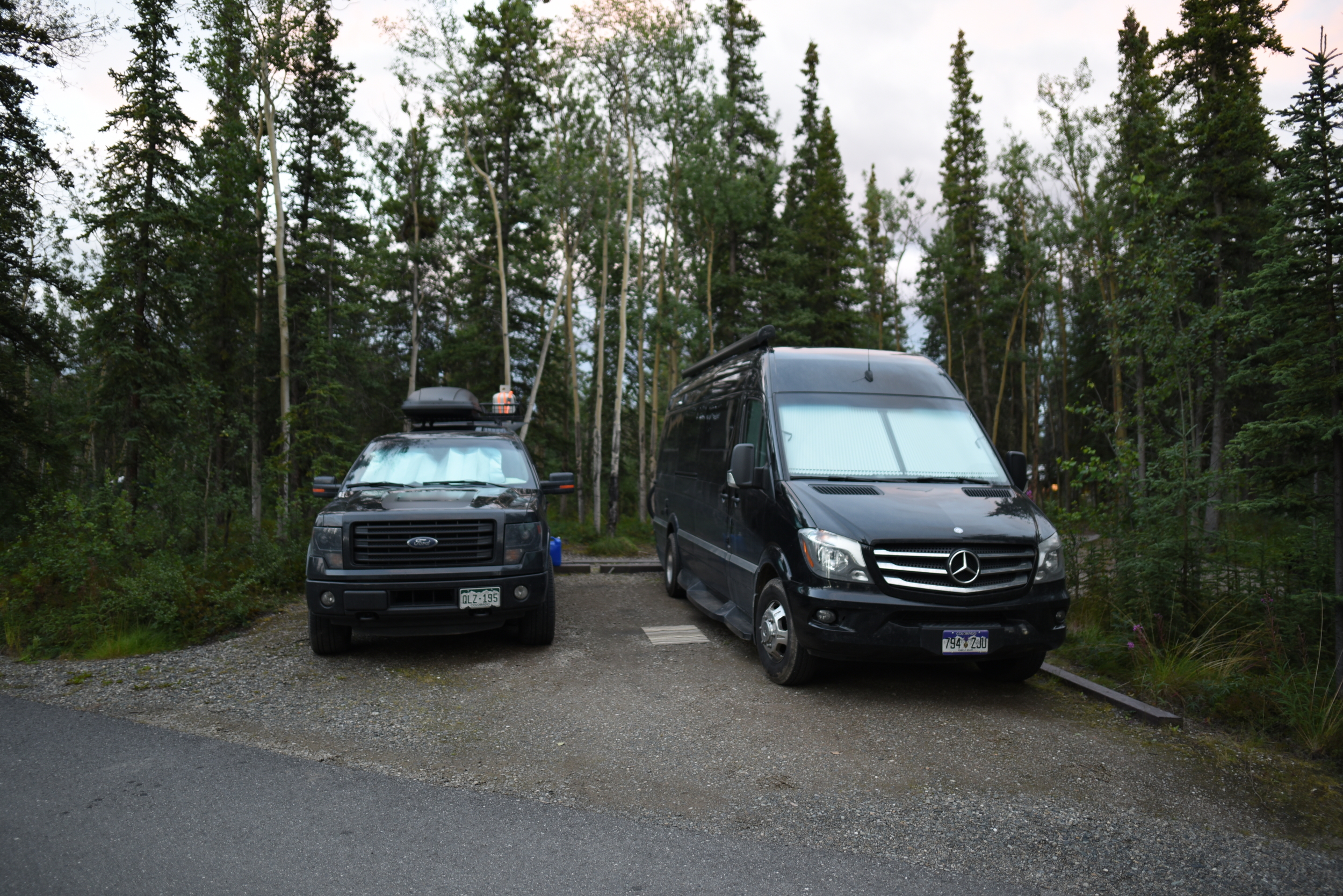 The black beasts camping together