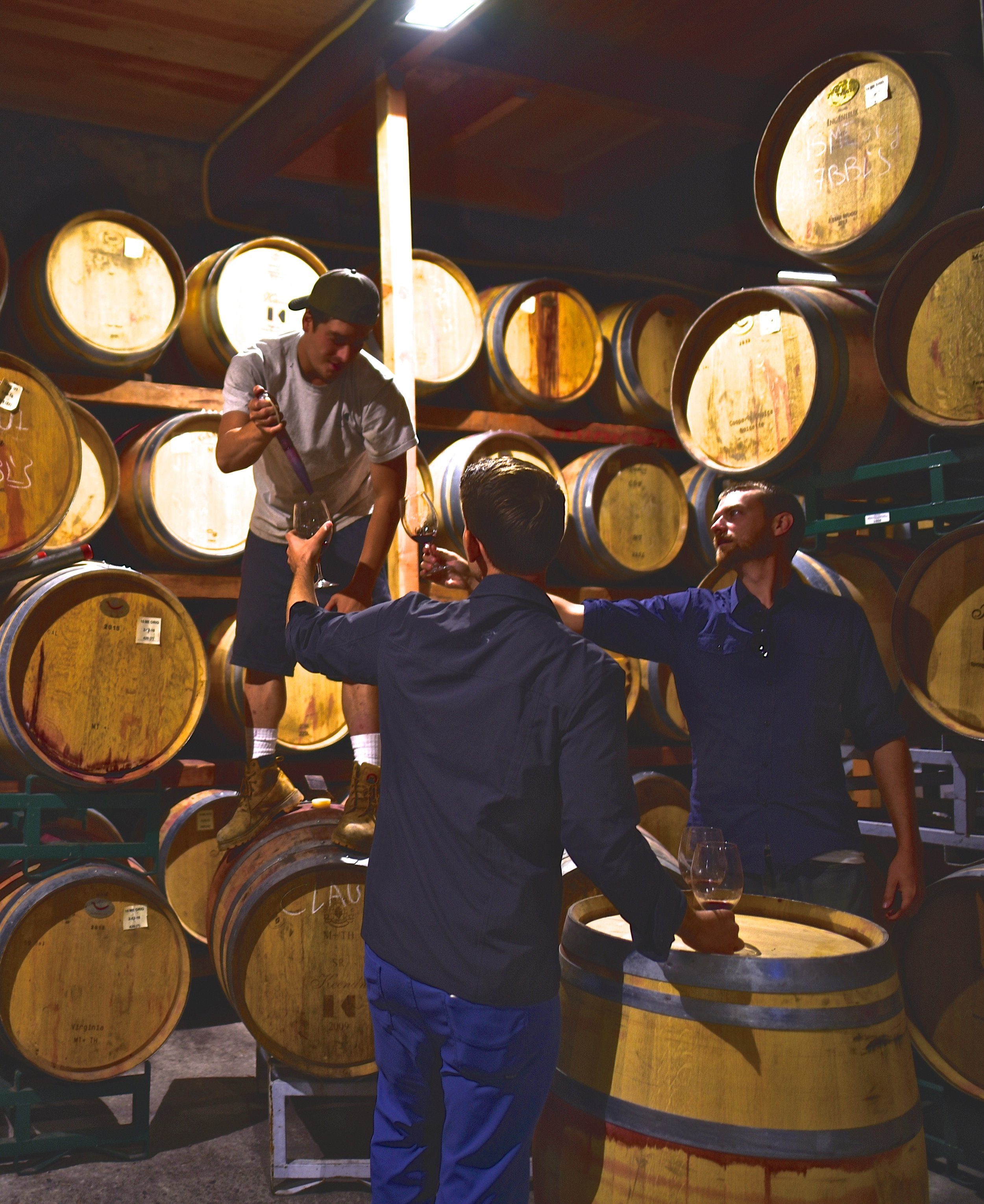 Tasting directly from the barrels