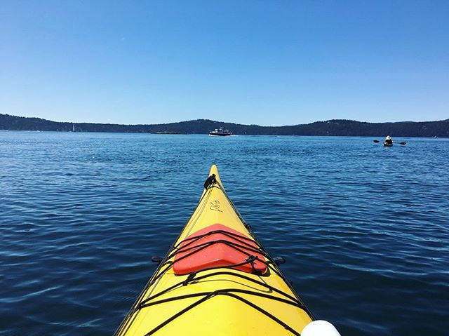 Kayaking off Orcas Island! Thank you to the Hamill's for a fun packed 3 days on Orcas and all the insanely good food!