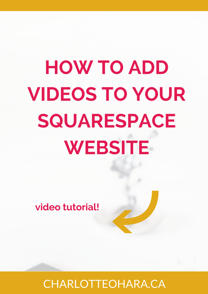 how to add videos to your squarespace website