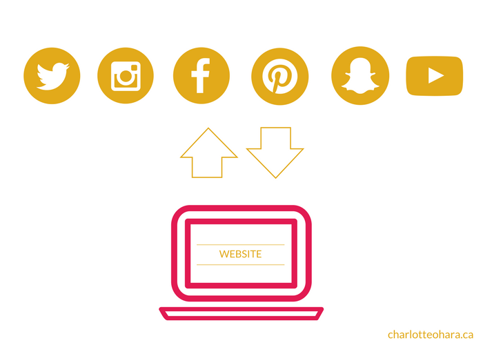 social media to support your website graphic