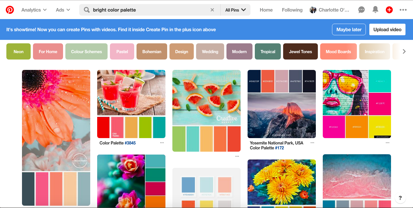 bright color palette example on pinterest.png
