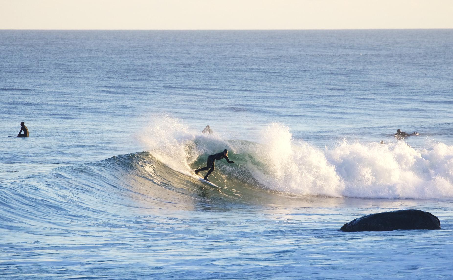 1-19-17 MTK Surfer 13.jpg