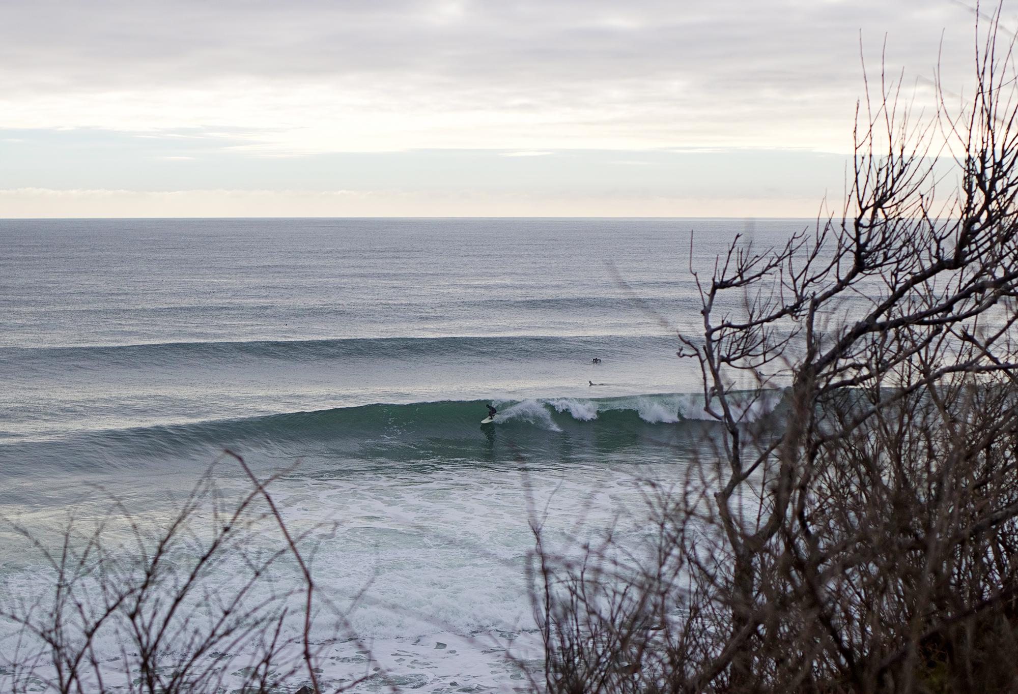 1-19-17 MTK Surfer 15.jpg