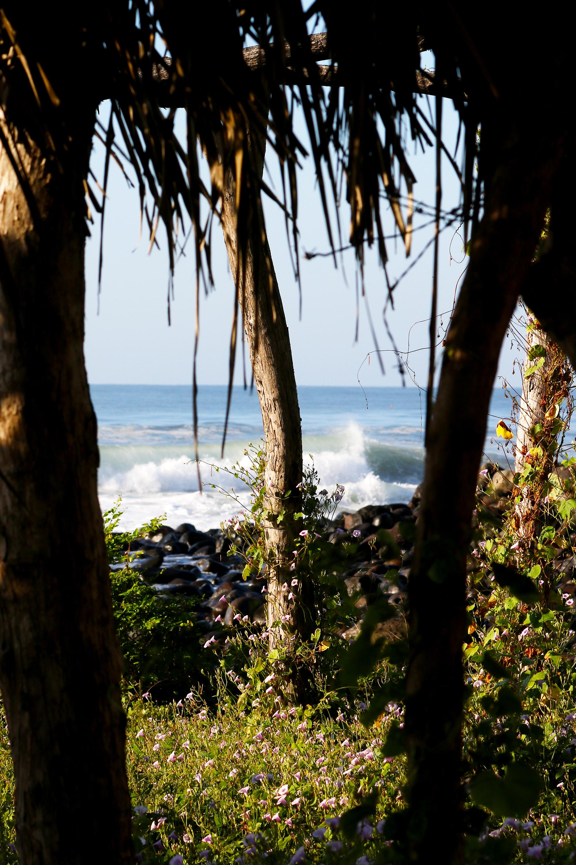 Nov 2017 K59 Surf Trip Photo Selects 4.jpg