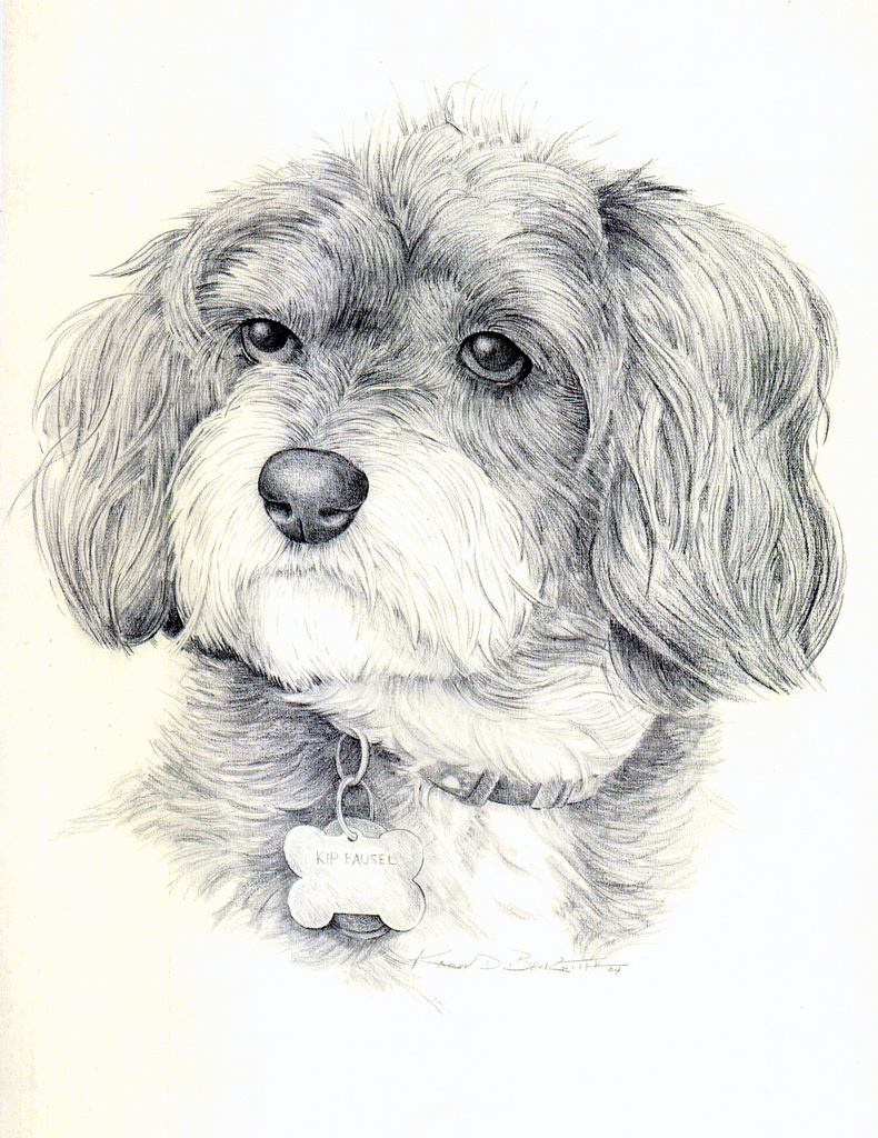Pet Portrait, Art