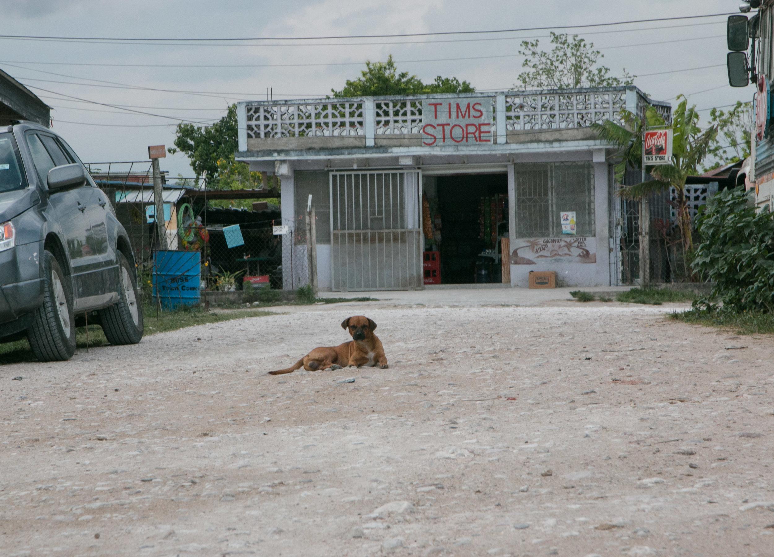 Belize 004.jpg