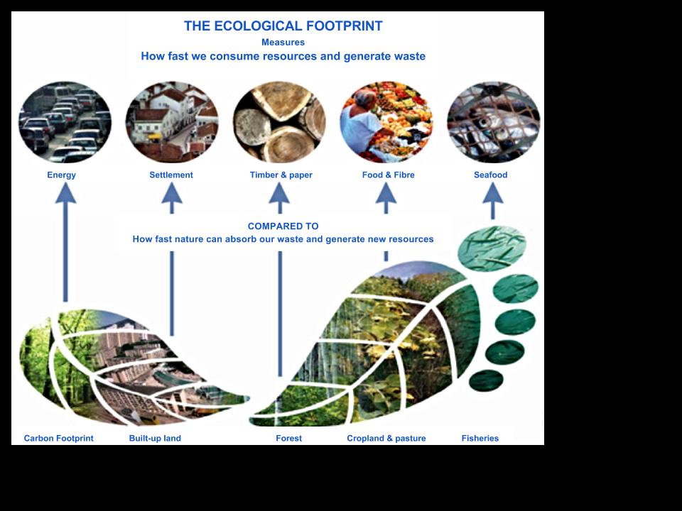 Eco-Footprint (1).png