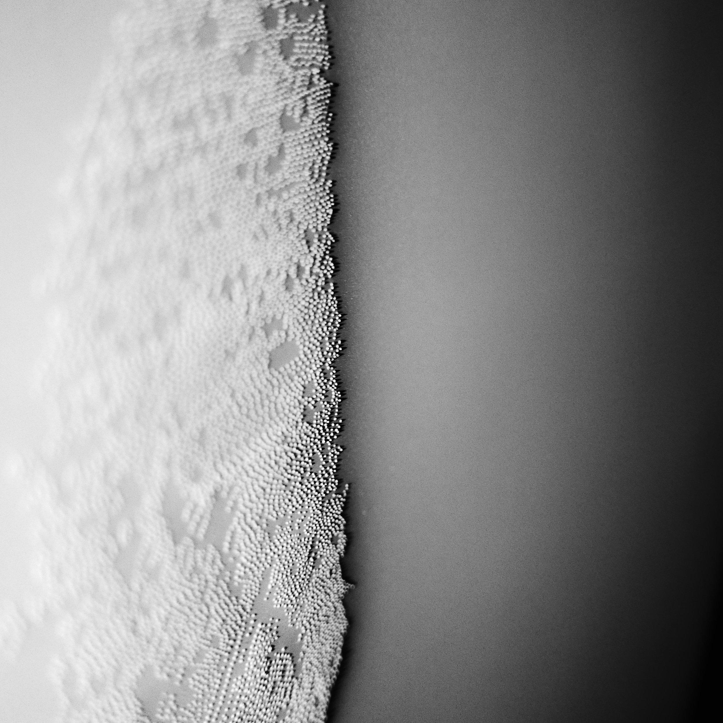 Drawing + Light  #5 white (detail)