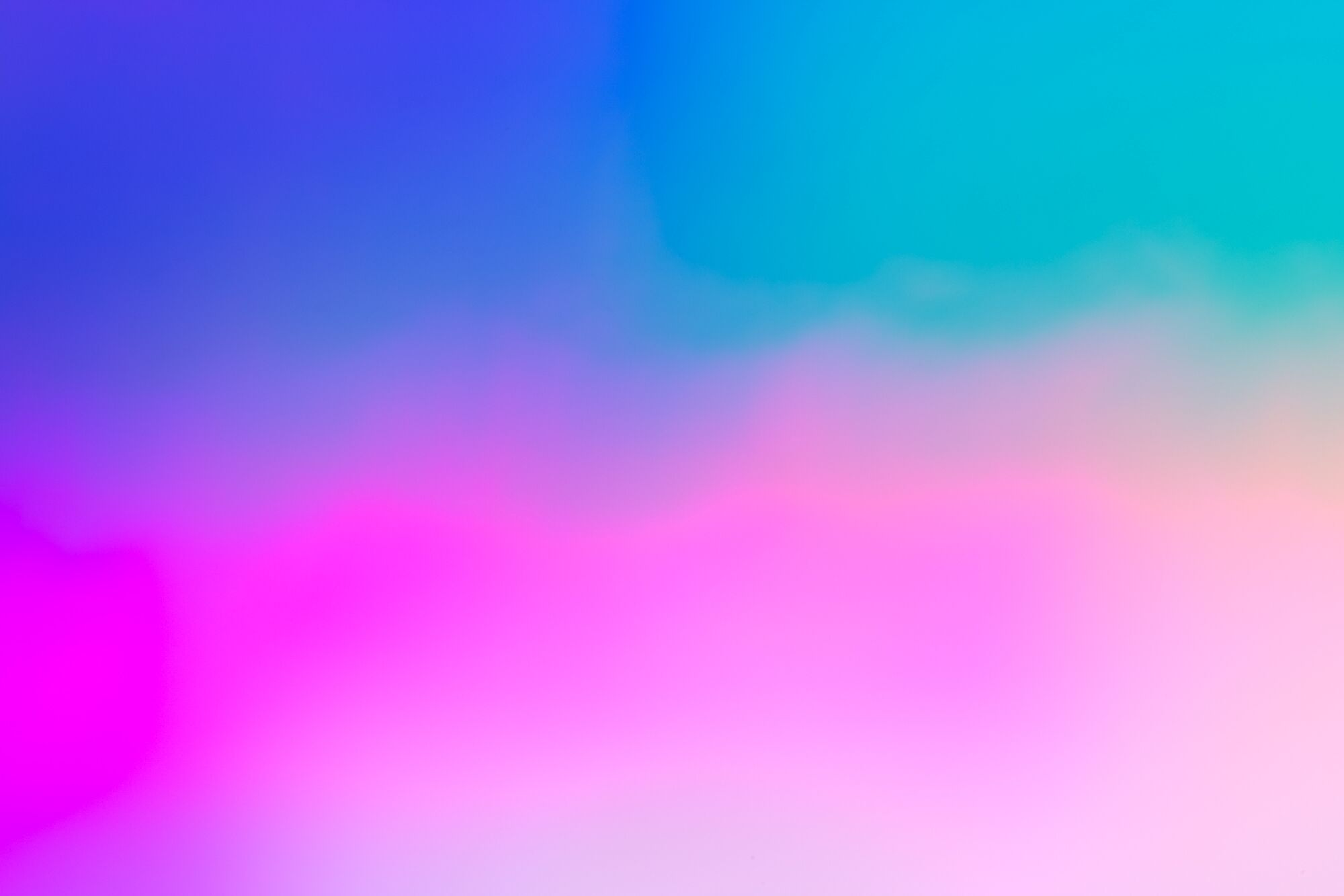 Spectrums of the Galapagos by Kate Ballis1.jpeg