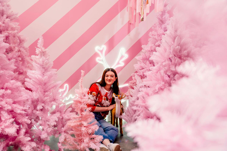 Meanwhile-in-Melbourne-Sugar-Republic-Christmasland.jpg