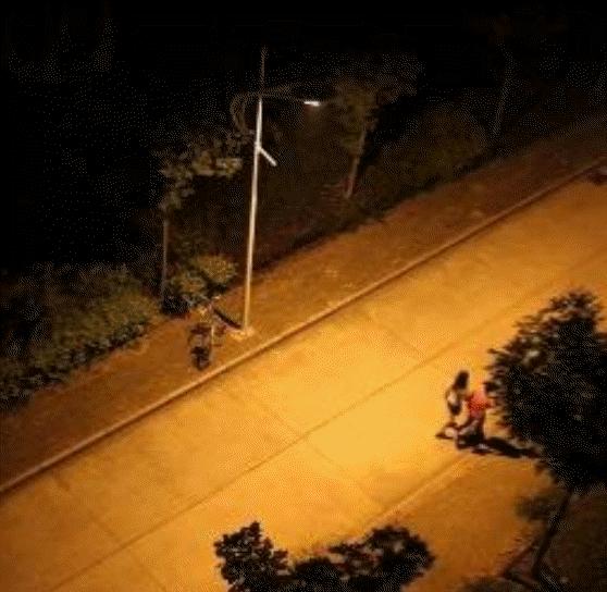 Solar LED Street 4