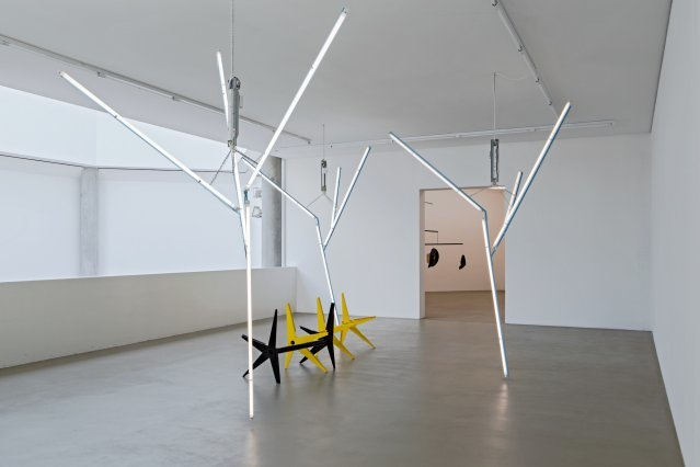 Martin Boyce, Our Love is Like the Flowers, the Rain, the Sea and the Hours (Black and Yellow Branches with Trees) . Installation view. Courtesy of the Museum Für Gegenwartkunst, Basel
