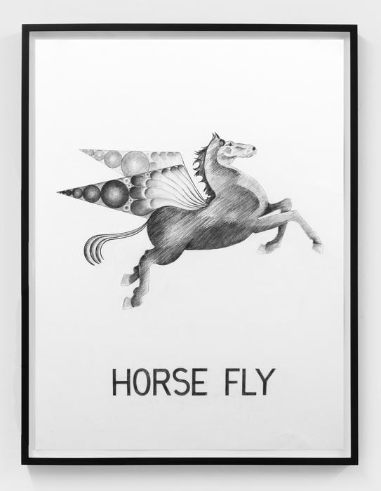 Vern Blosum,Horse Fly, 2015, Graphite on paper