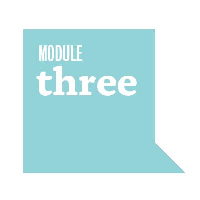 module-17.png