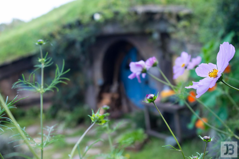 hobbiton-38.jpg
