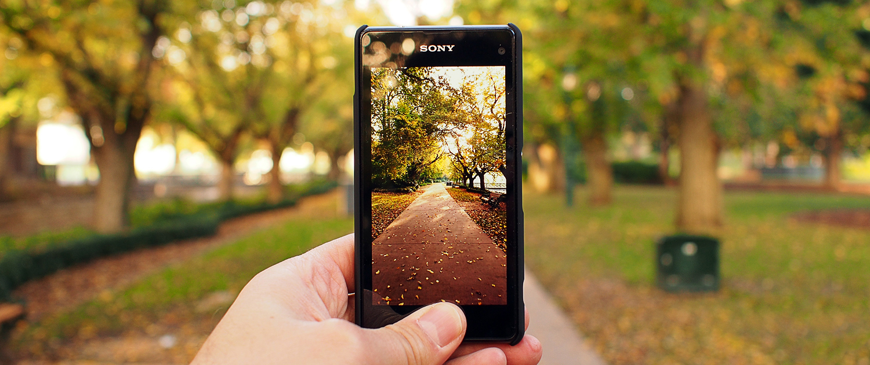 Phone Photography -