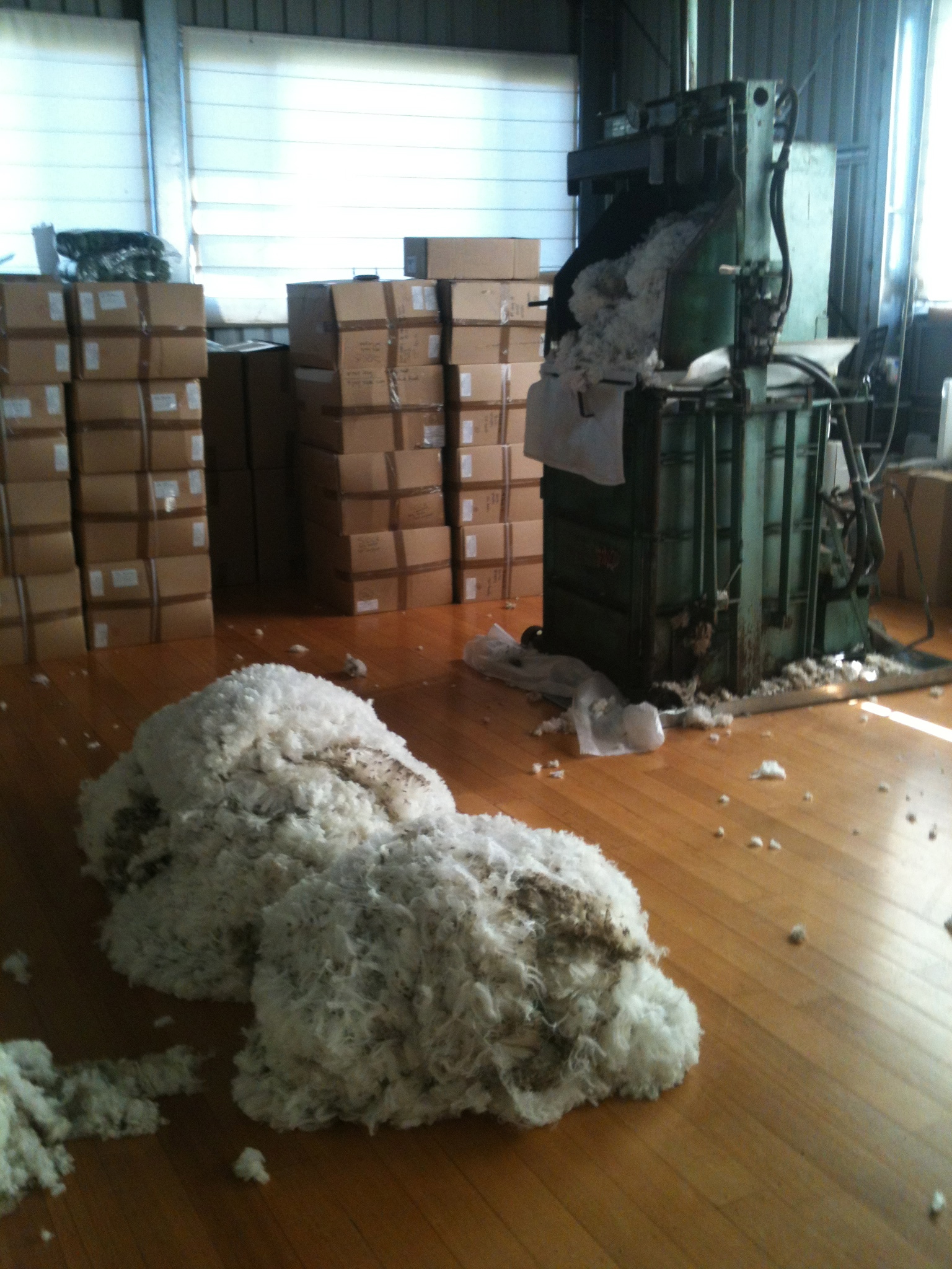 Ewe fleeces ready to go into the press, with boxes of yarn from last year's clip in the background.