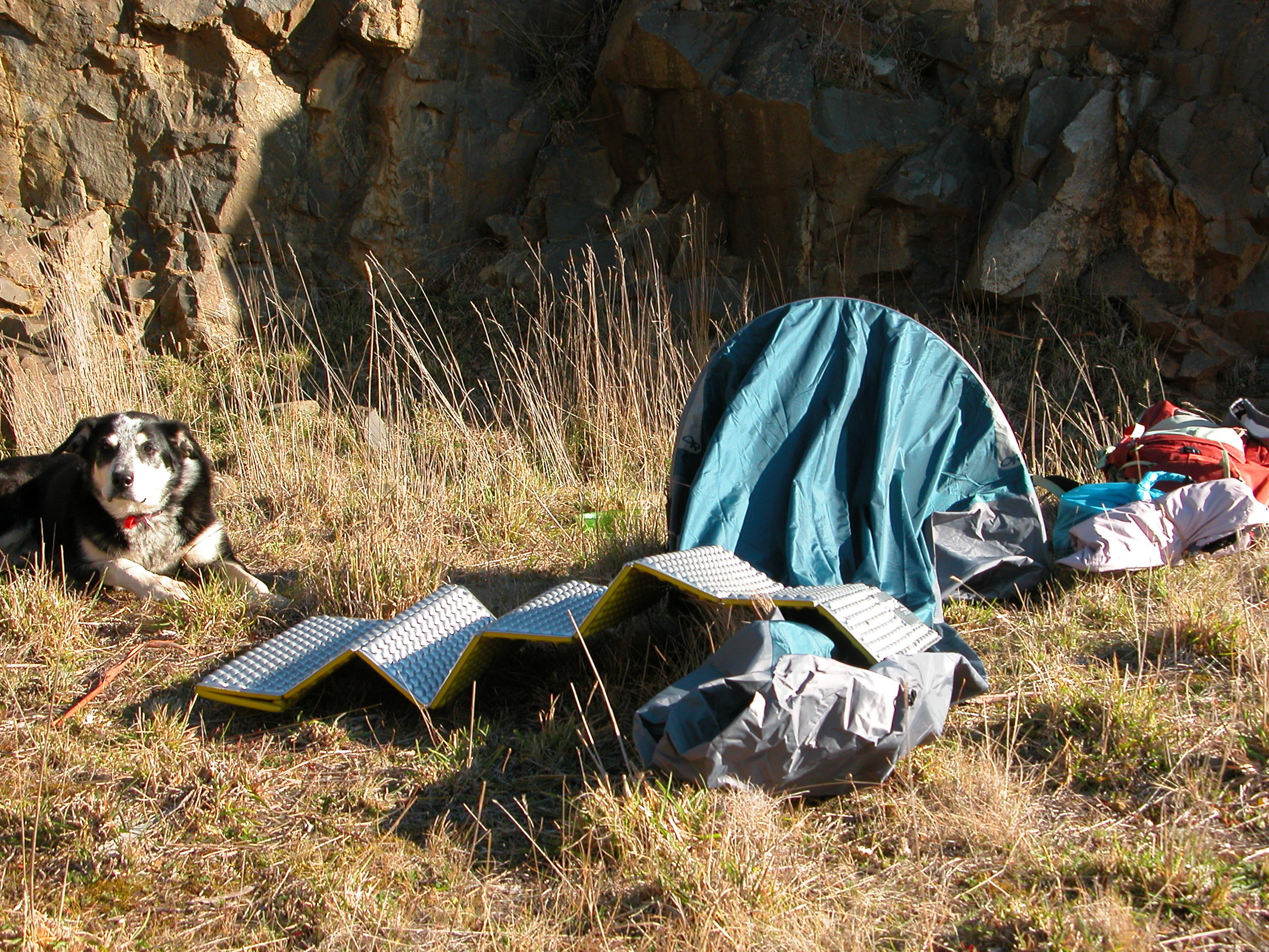 """Chance guarding the """"bivy bag"""" and the new thermal pad. We're hunkered down in the quarry, trying to stay out of the westerly gale."""