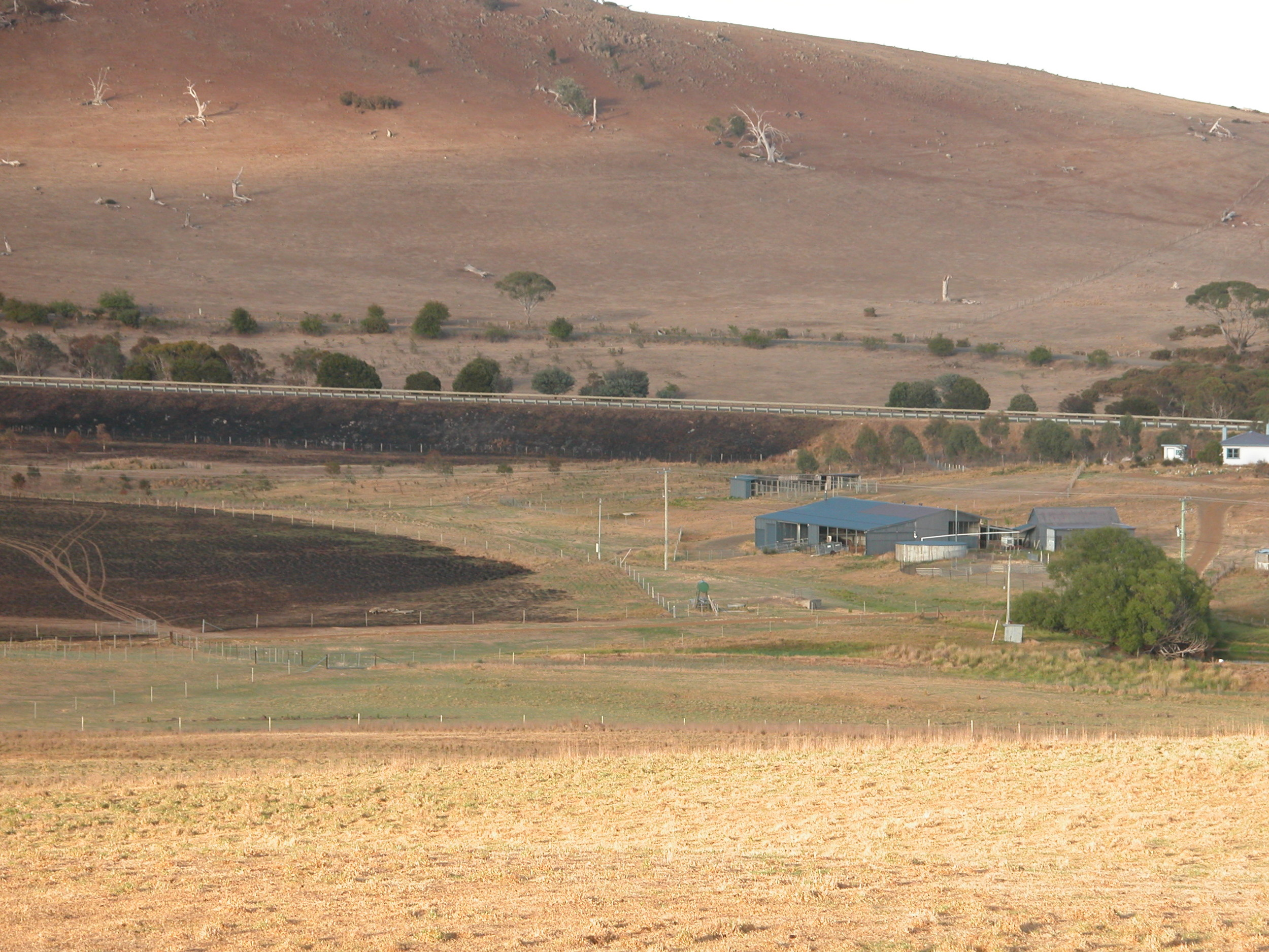 The fire started on the highway, and you can see how close it came to the house, kennels and woolshed.