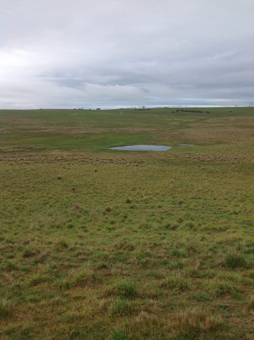 P1: A view of the Basin. The big water hole was completely dry in early May.
