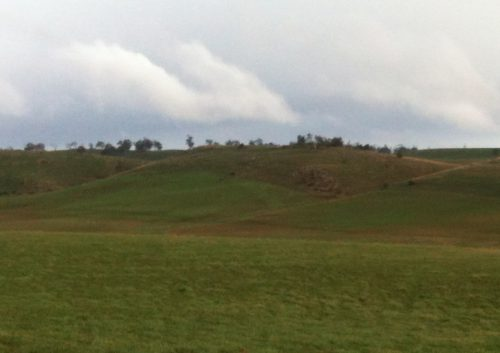 A view across the Lucerne Paddock to give you an idea of the topography of the sheltered area up top.