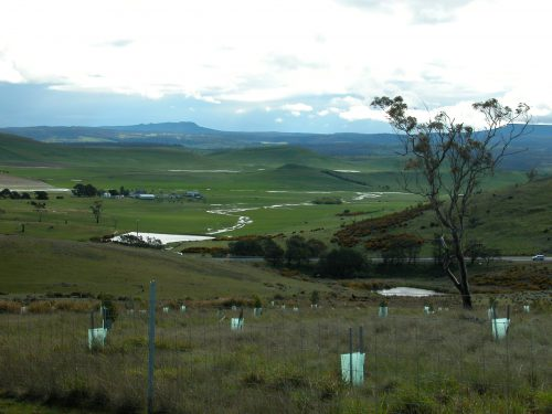 P3: On the southern side of the property, above the Highway Reserve, the view across the valley to Table Mountain. This area and the one in the previous shot are the headwaters of the Jordan River, which flooded over the main highway south of here a few days later.