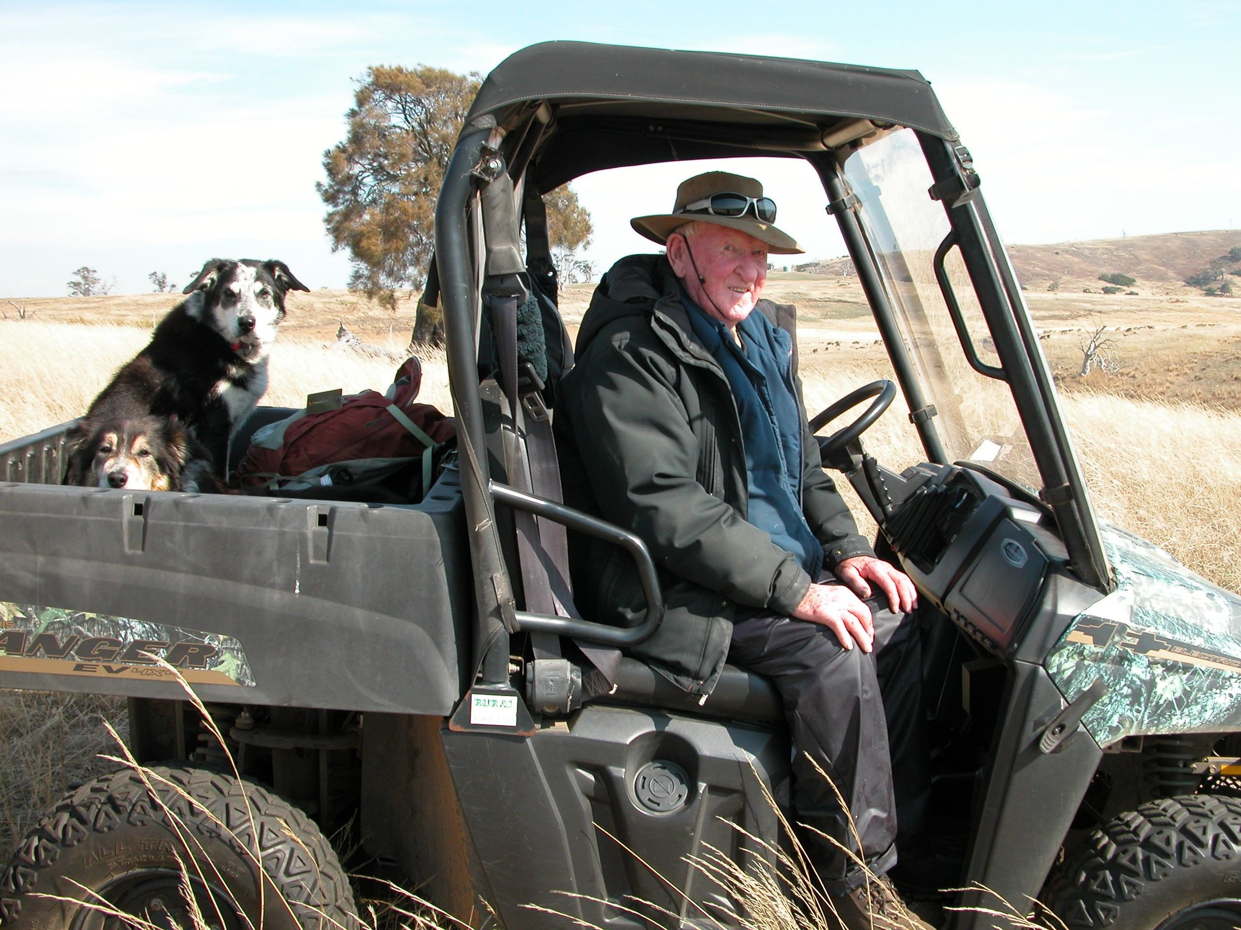 Retired stockman Davey went around the ewes and lambs with me a couple of times. He was just as perplexed as I was about the ewe deaths.