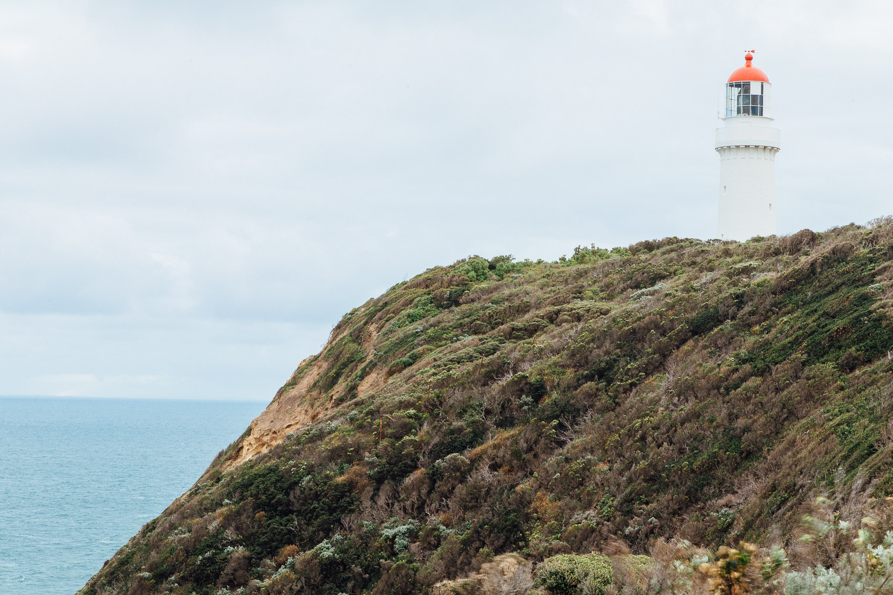 The dramatic coastline around Cape Schanck and its distinctive lighthouse  is popular with hikers and nature lovers for its flora and fauna, including albatrosses; and if it's kangaroos you're keen to see, try further east along the walk to Bushrangers Bay.